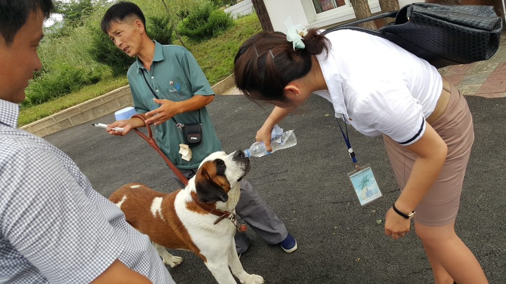 North Korean guide feeding a dog at Pyongyang central zoo