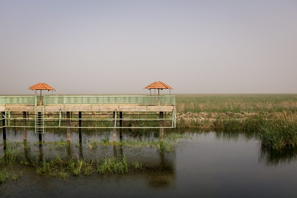 the Mesopotamian Marshes of Iraq