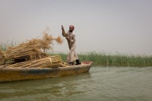 Exploring The Mesopotamian Marshes of Iraq